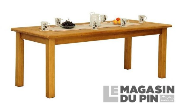 Table rectangulaire 120